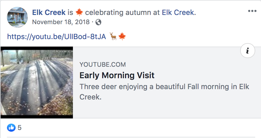 Elk Creek Facebook Post - Deer Video